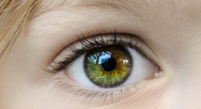 为什么睡觉能够减轻眼睛疲劳? 18 - 土人仓库